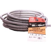 Southwire 25' 12/2 Stl Armr Cable 55274921