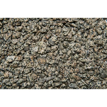 Fantasia Crystal Vault: 3 lb High Grade Dalmatian Jasper Tumbled Stones - XXSmall - 0.25