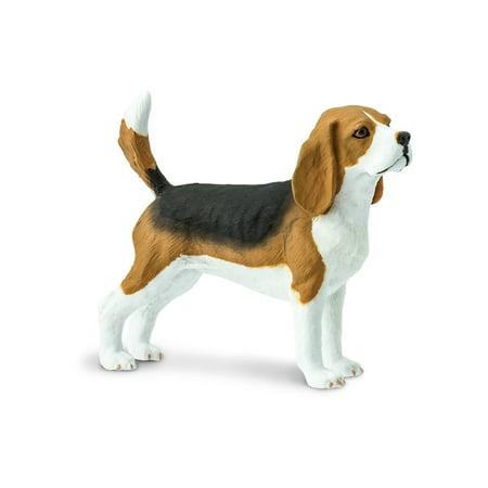 Best in Show Beagle Safari Ltd Animal Educational Kids Toy Figure (Kids Safari)