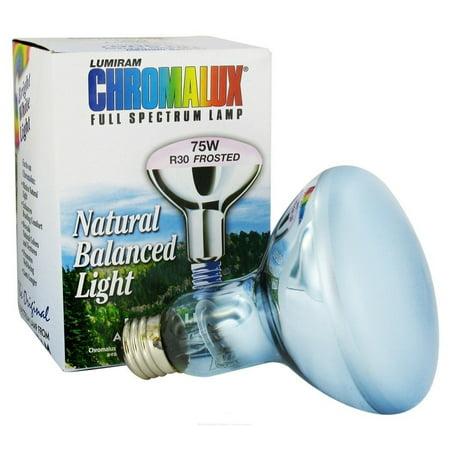 Full Spectrum Flood Light 75 Watt Chromalux 1 Bulb