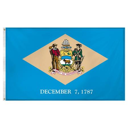 Delaware flag 3 x 5 feet Super Knit polyester - Halloween Store Delaware