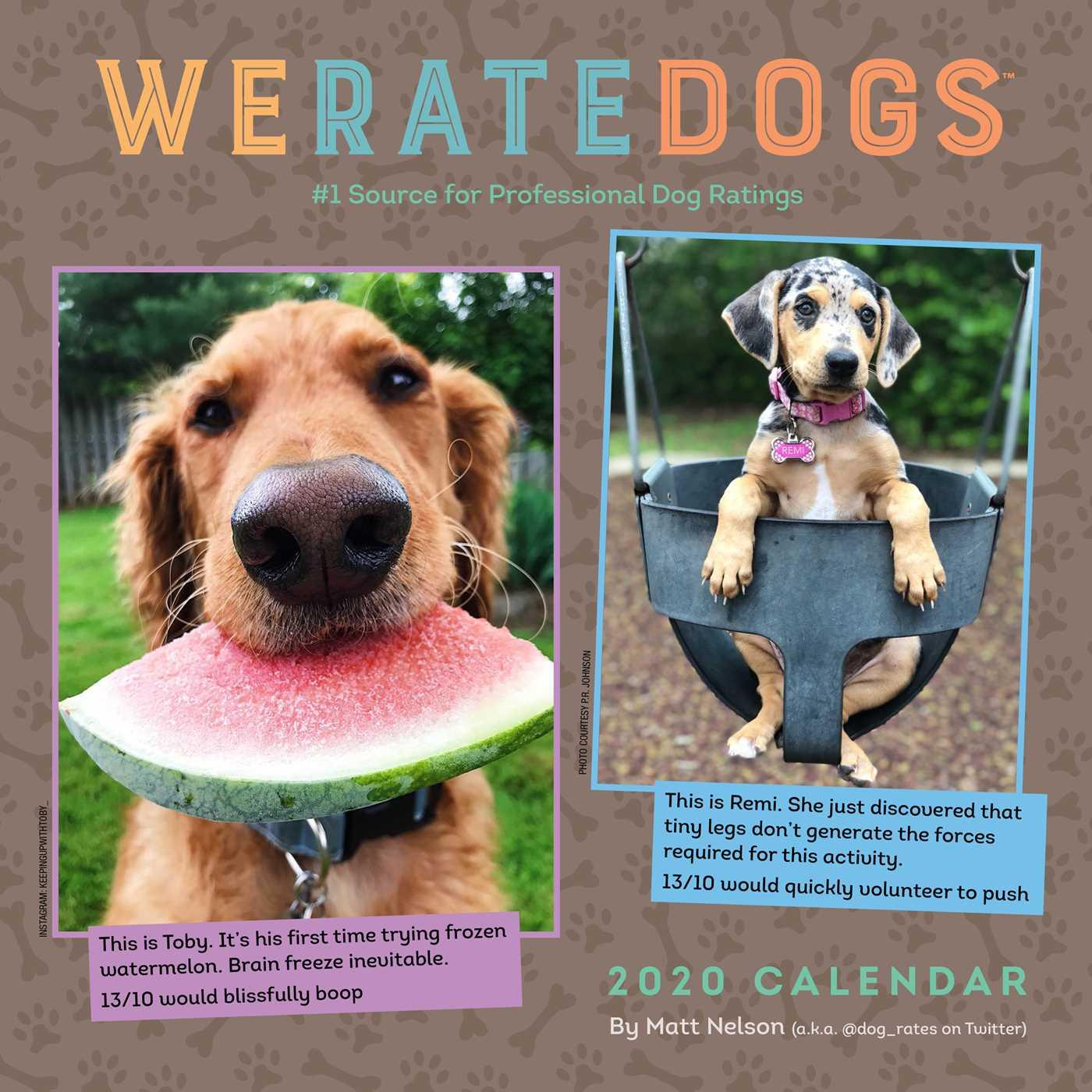 WE RATE DOGS 2021 WALL CALENDAR