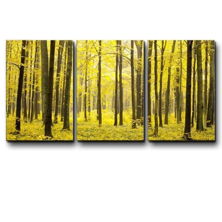 wall26 - Three Piece Canvas - Tree Forest During Fall Time with Yellow Leaves on The Ground on 3 Panels - Canvas Art Home Decor - 24x36 (Fall Forest Leaves)