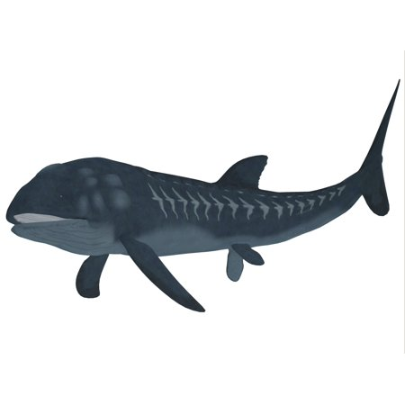Leedsichthys is an extinct bony fish from the Mesozoic Era Canvas Art - Corey FordStocktrek Images (33 x 25)