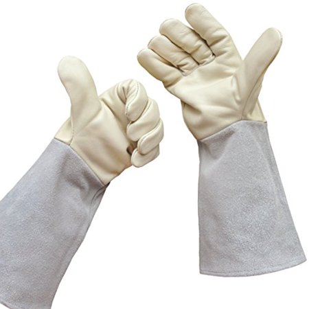 Rose Gardening Gloves by Euphoria - Cowhide Leather Garden Gauntlet Gloves - Puncture Resistant Work Gloves for Men and Women in S, M, L (Runs Large) - Best for Pruning Blackberries and Thorny (Best Tool To Cut Blackberry Bushes)