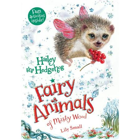 Hailey the Hedgehog : Fairy Animals of Misty Wood](Taylor The Hedgehog)