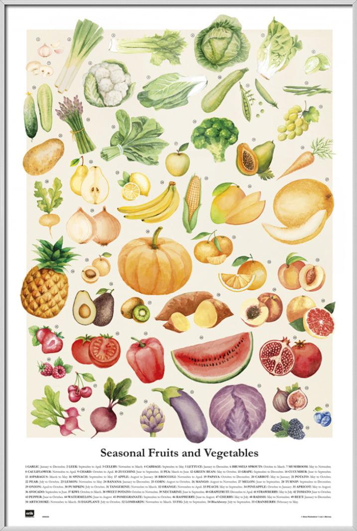 Seasonal Fruits And Vegetables Poster Fruits Vegetables Descriptions Size 24 X 36 Walmart Com Walmart Com