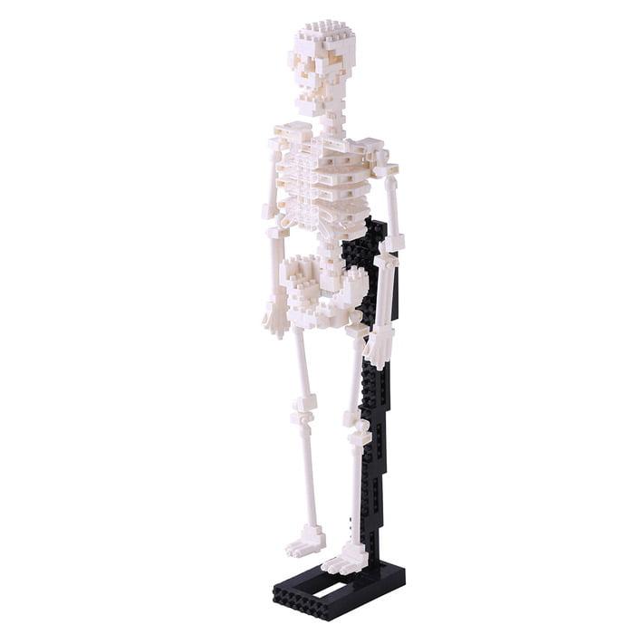 Nanoblock Human Skeleton by Schylling