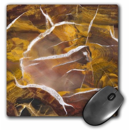 3dRose Argentina. Petrified wood pattern - SA01 BJA0044 - Jaynes Gallery, Mouse Pad, 8 by 8 inches