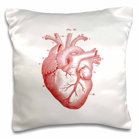 3dRose Print of Victorian Diagram Of The Heart - Pillow Case, 16 by