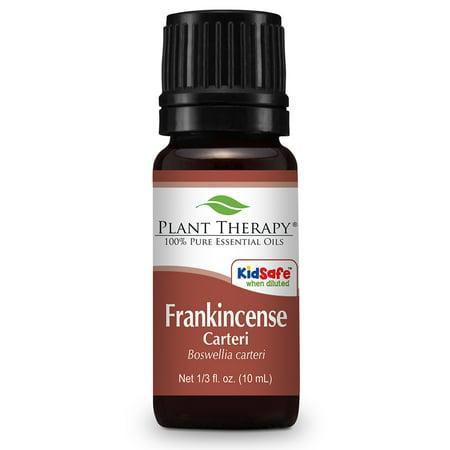 Plant Therapy Frankincense Carteri Essential Oil 10 mL (1/3 oz) 100% Pure, Undiluted, Therapeutic Grade