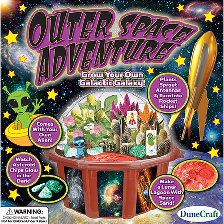 Dunecraft Outer Space Adventure