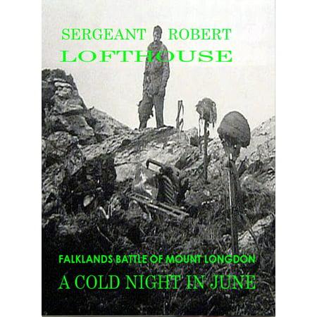A Cold Night in June: Falklands Battle of Mount Longdon -
