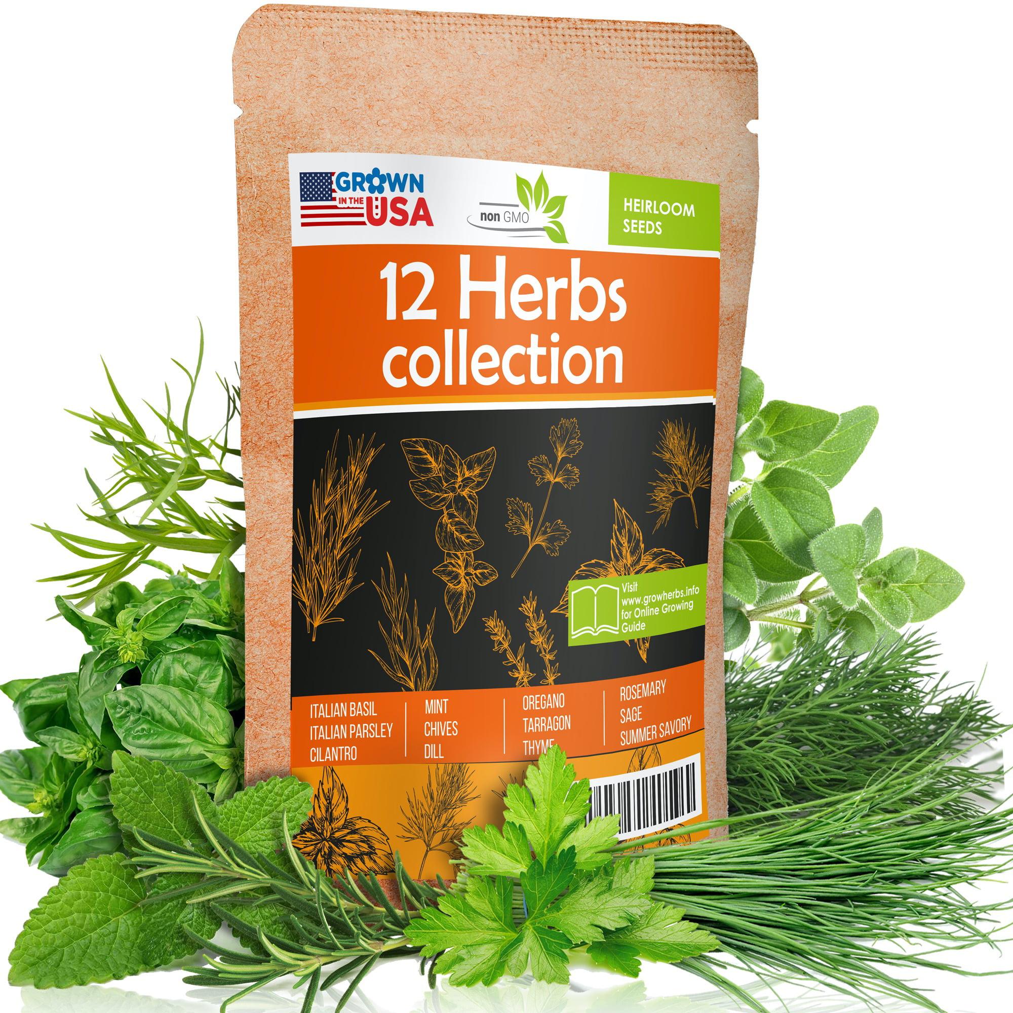 50 Thyme Heirloom Seeds Garden Herbs Medicinal Non GMO ~ Organic ~Pesticide Free