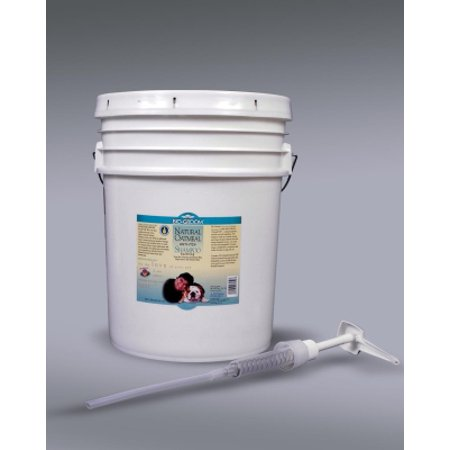 Biogroom Oatmeal Shampoo - Bio-Groom Natural Oatmeal 27050 Flea and Tick Soothing Anti-Itch Dog Shampoo, 5 gal, Fresh Rainfall