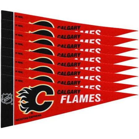 Calgary Flames NHL Mini Pennant Set (8) ()
