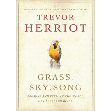Grass, Sky, Song : Promise and Peril in World of Grassland Birds (Shy Birds)