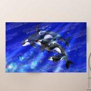 Wallhogs Orcas Poster Wall Mural
