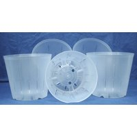 Clear Plastic Pot for Orchids 5 inch Diameter - Quantity 5