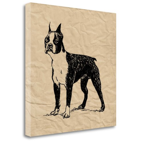 Tangletown Fine Art Boston Terrier Canvas Wall Art By Sabine Berg
