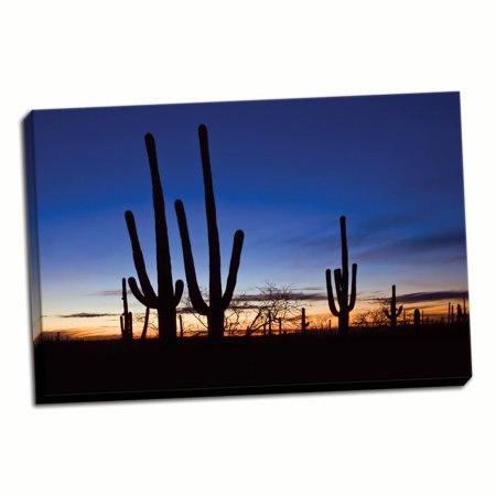 Gango Home Decor Classic Saguaro Sunset II by Larry Malvin (Ready to Hang); One 36x24in Hand-Stretched Canvas