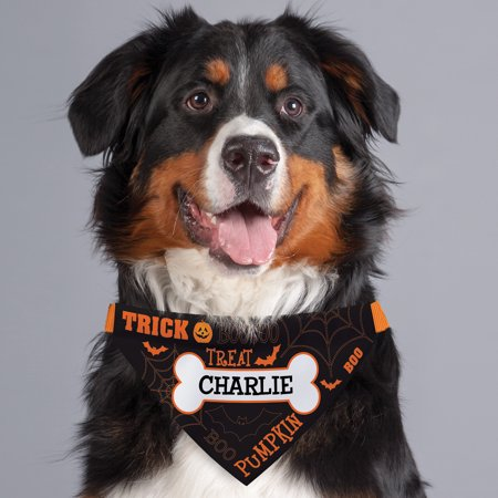 Head Personalized Dog - Personalized Trick Or Treat Dog Bandana Collar Cover