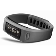 Garmin vivofit Slate Fitness Band