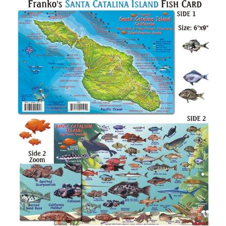 Franko Maps Santa Catalina Island Fish ID for Scuba Divers and (Catalina Island Fish)