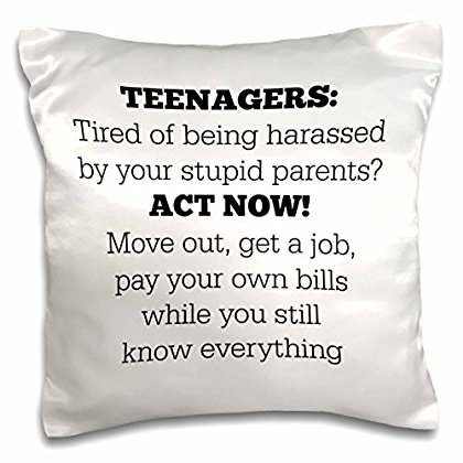 3dRose Teenagers tired of being harassed your stupid parents, Pillow Case, 16 by 16-inch