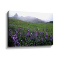 ArtWall Kathy Yates Figueroa Mountain With Fog Wall Art
