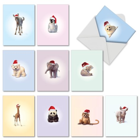 M6726XSG CHRISTMAS ZOO BABIES' 10 Assorted Merry Christmas Greeting Cards with Envelopes by The Best Card