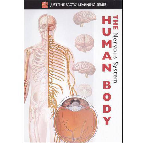 Just The Facts: The Human Body - Nervous System
