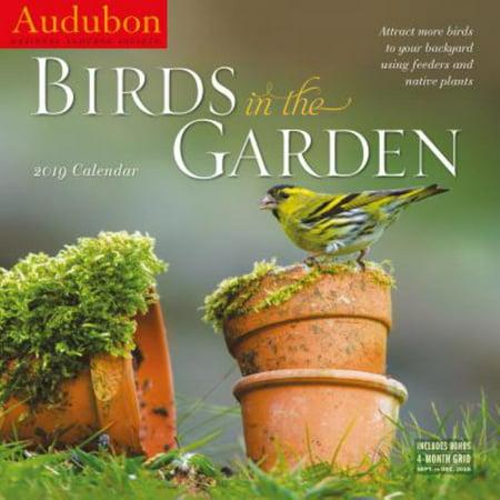 Birds 2008 Calendar (2019 AUDUBON BIRDS IN THE GARDEN WALL CALENDAR)