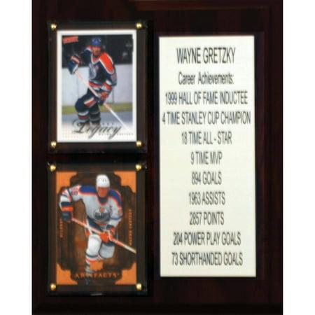 C&I Collectables NHL 8x10 Wayne Gretzky Edmonton Oilers Career Stat -