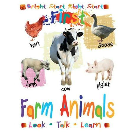 animal farm power distribution