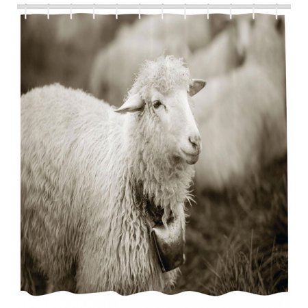Sheep Shower Curtain Fluffy Wooly With A Bell In The Wild Pastures And Mountains