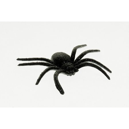 Spider Halloween Decoration Shock Deco Scare Fear Stretched Canvas 10 x - Deco Halloween Maison