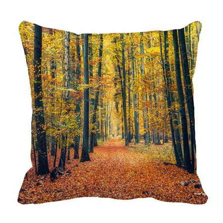 PHFZK Fall Trees Pillow Case, Landscape of Autumn Forest Pathway in the Fallen Leaves Pillowcase Throw Pillow Cushion Cover Two Sides Size 18x18 inches ()