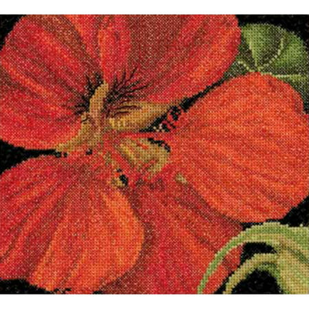 East Indian Cherry On Aida Counted Cross Stitch Kit, 5.75
