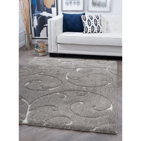 Bliss Rugs Scroll Transitional Area Rug