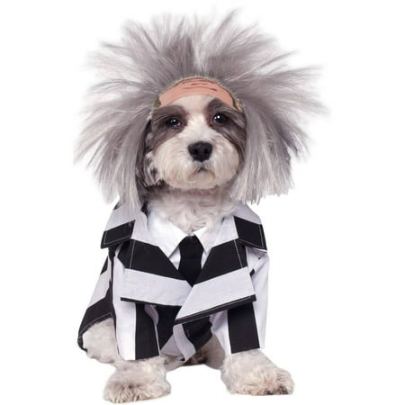 Beetlejuice Pet Costume L