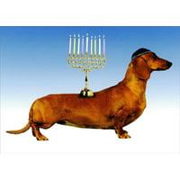Recycled Paper Greetings Kosher Weenie Funny / Humorous Hanukkah Card