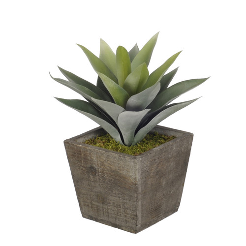 House of Silk Flowers Inc. Artificial Frosted Green Succulent Desk Top Plant in Pot