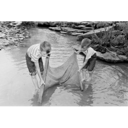 Boys Fishing In Stream With Net Poster Print