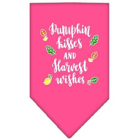 Pumpkin Kisses Screen Print Bandana Bright Pink (Bright Pumpkin)