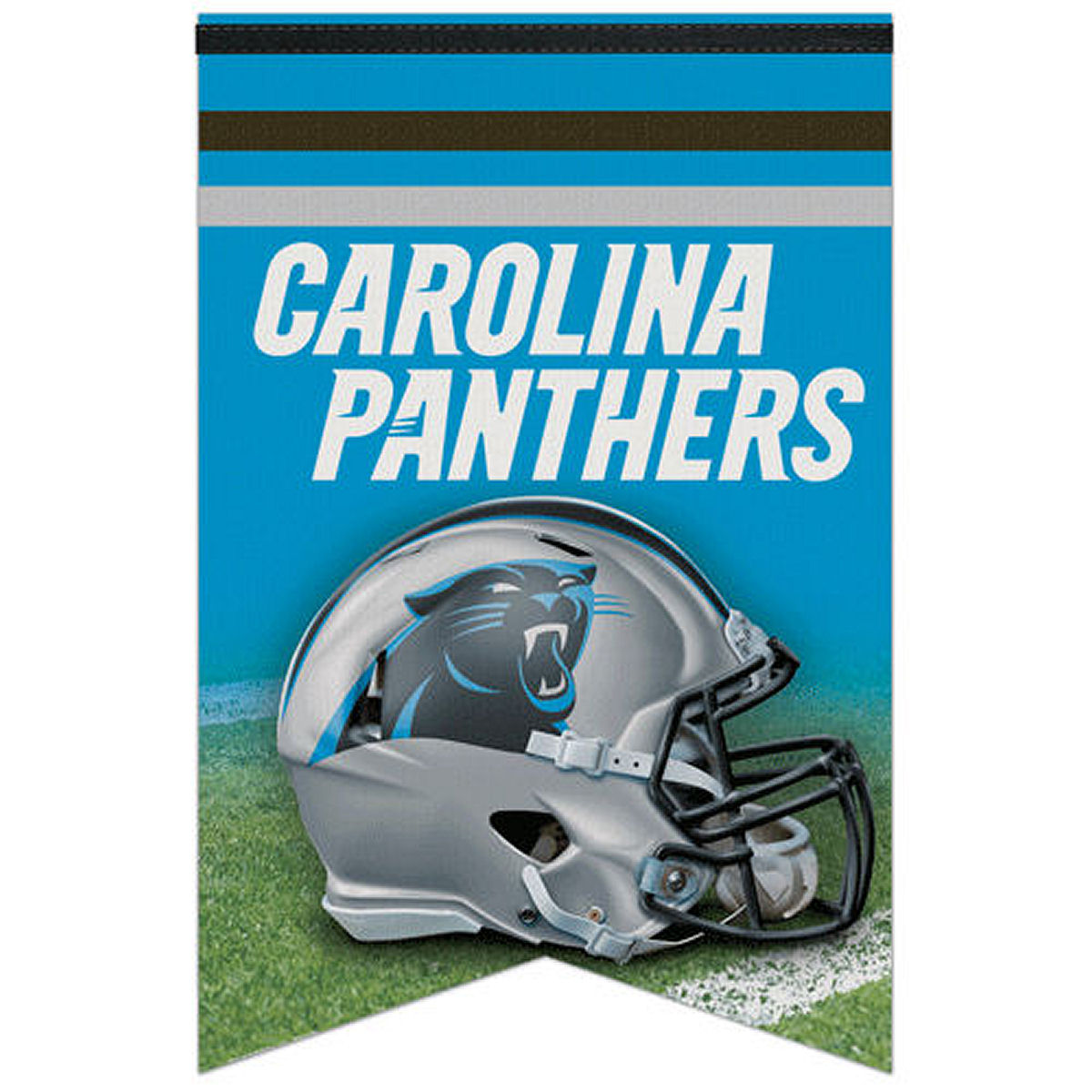 "Carolina Panthers 17"" x 26"" Banner"