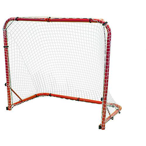 Park and Sun Street Ice Sports Goal