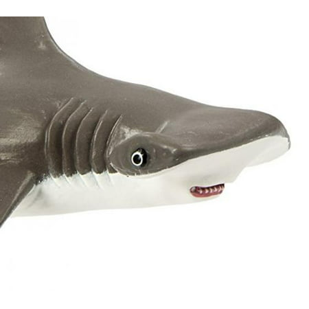 Safari Ltd Incredible Creatures Collection - Hammerhead Shark Baby - Realistic Hand Painted Toy Figurine Model - Quality Construction from Safe and BPA Free Materials - For Ages 3 and Up