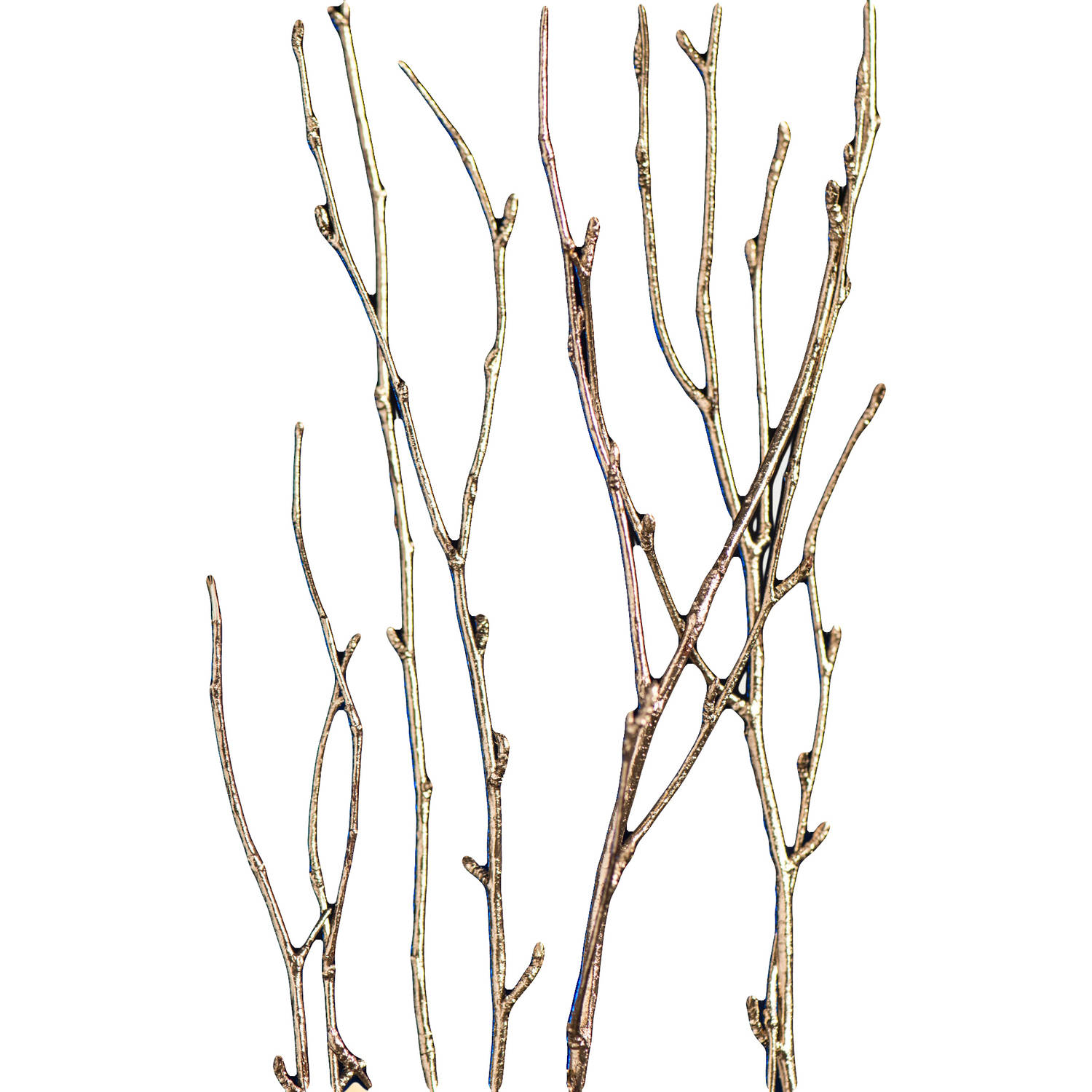 Gold Metallic Birch Branches, Set/5