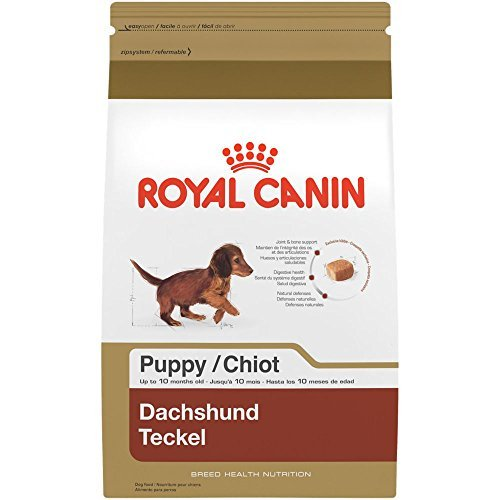 BREED HEALTH NUTRITION Dachshund Puppy dry dog food, 2.5-Pound by, ROYAL CANIN BREED HEALTH NUTRITION Dachshund Puppy dry dog food, 2.5-Pound By Royal Canin